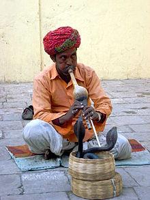 Name:  220px-Charmeur_de_serpents_à_Jaipur_(2).jpg Views: 46 Size:  18.3 KB