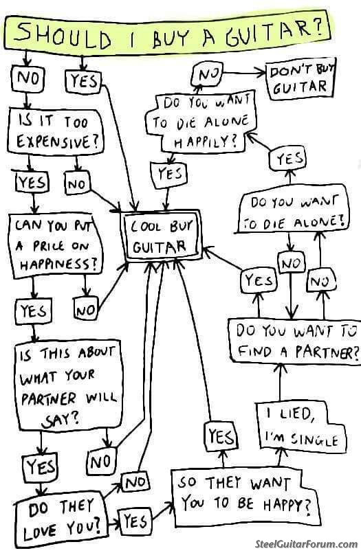 Should I Buy Another Guitar Flow Chart--or--I Have G.A.S ...