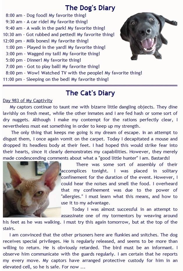 Cat And Dog Theology Pdf