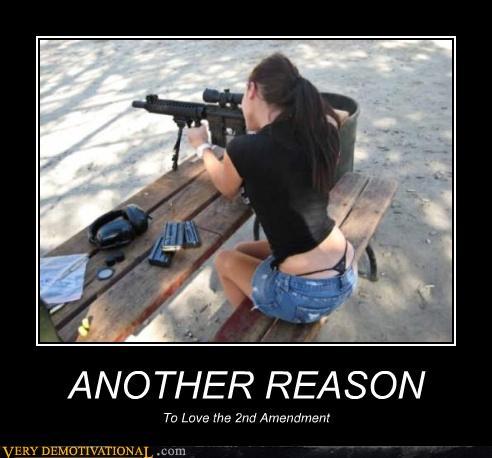 Gun Demotivational Posters Page 2