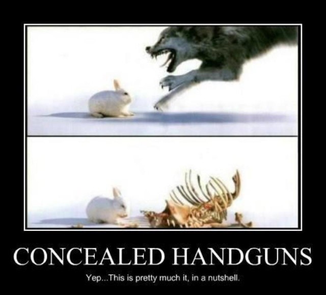 Name:  conceled carry.jpg Views: 5 Size:  50.4 KB