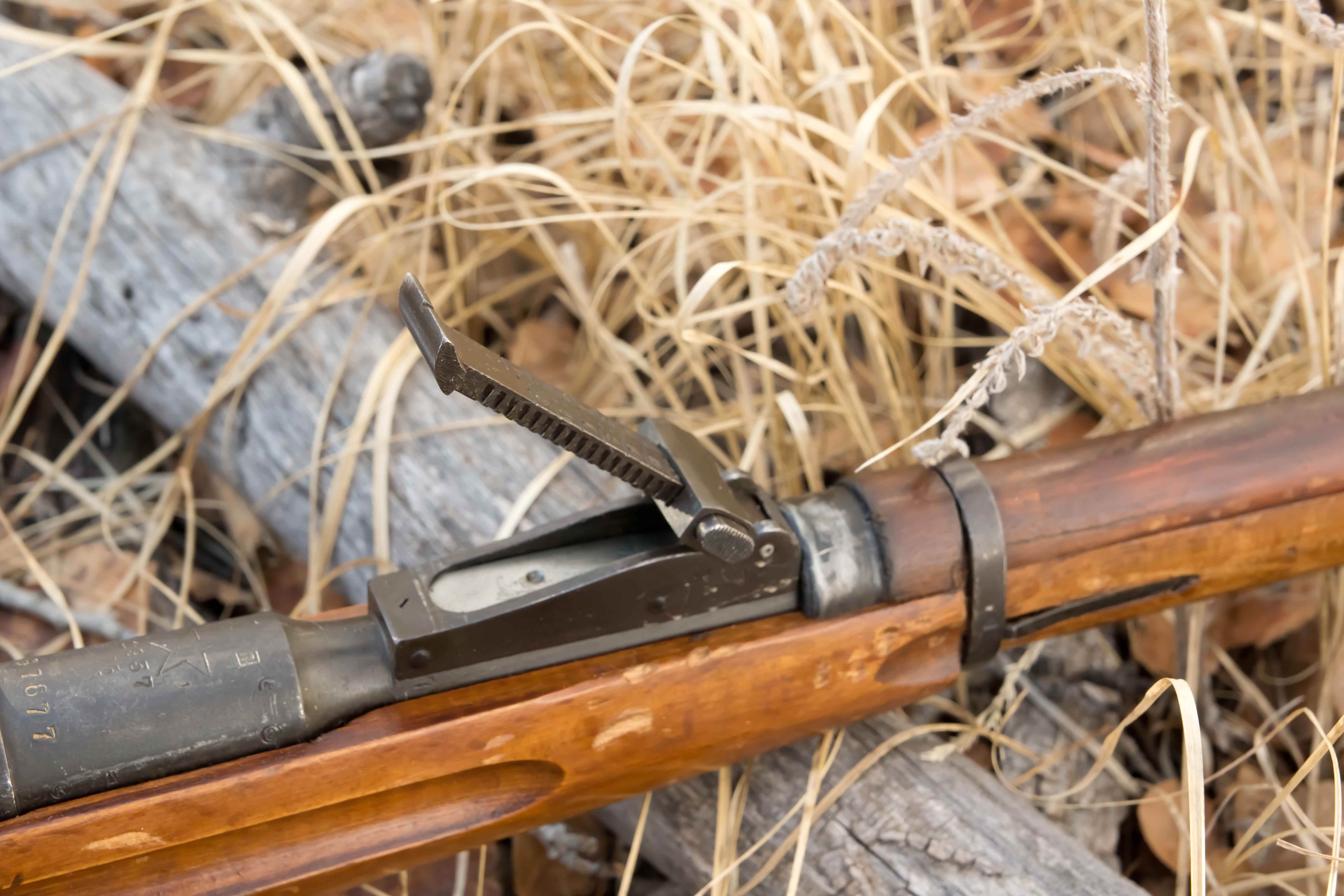 mosin on down to the cabelas page 2