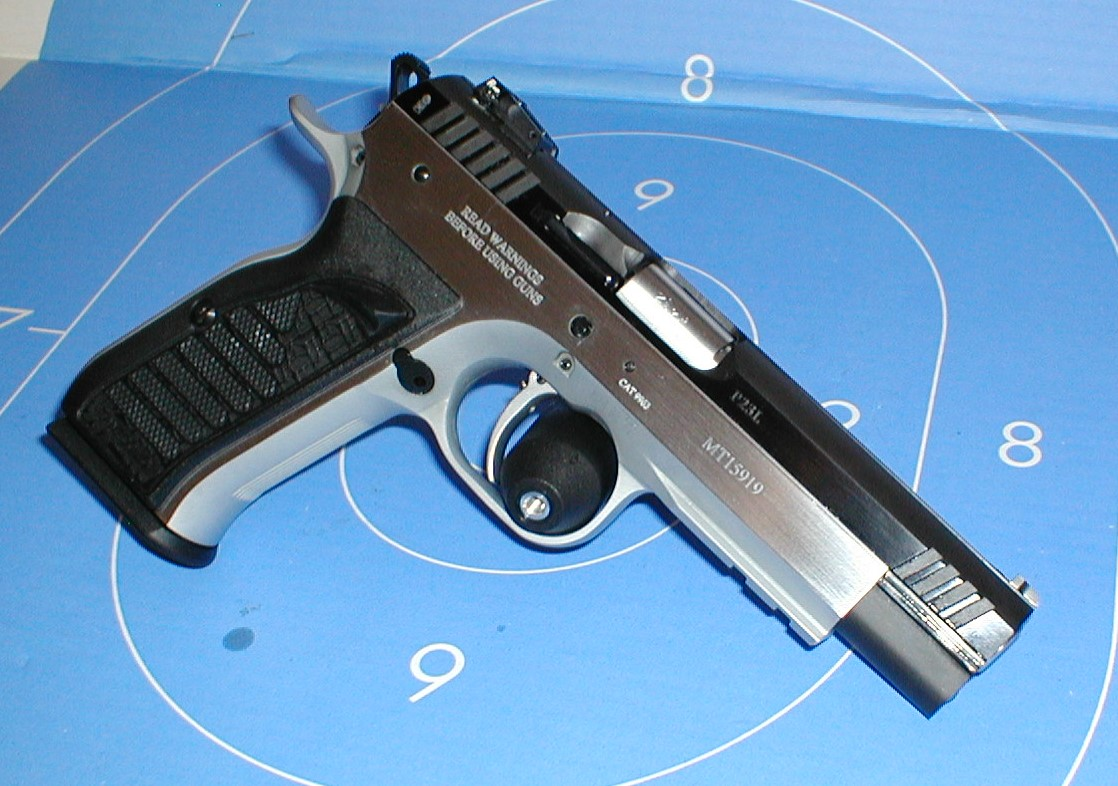 Bersa Thunder 380 plus review - Page 2