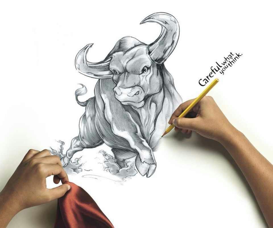 Taurus Bull Drawing A drawing found on taurusTaurus Bull Drawing