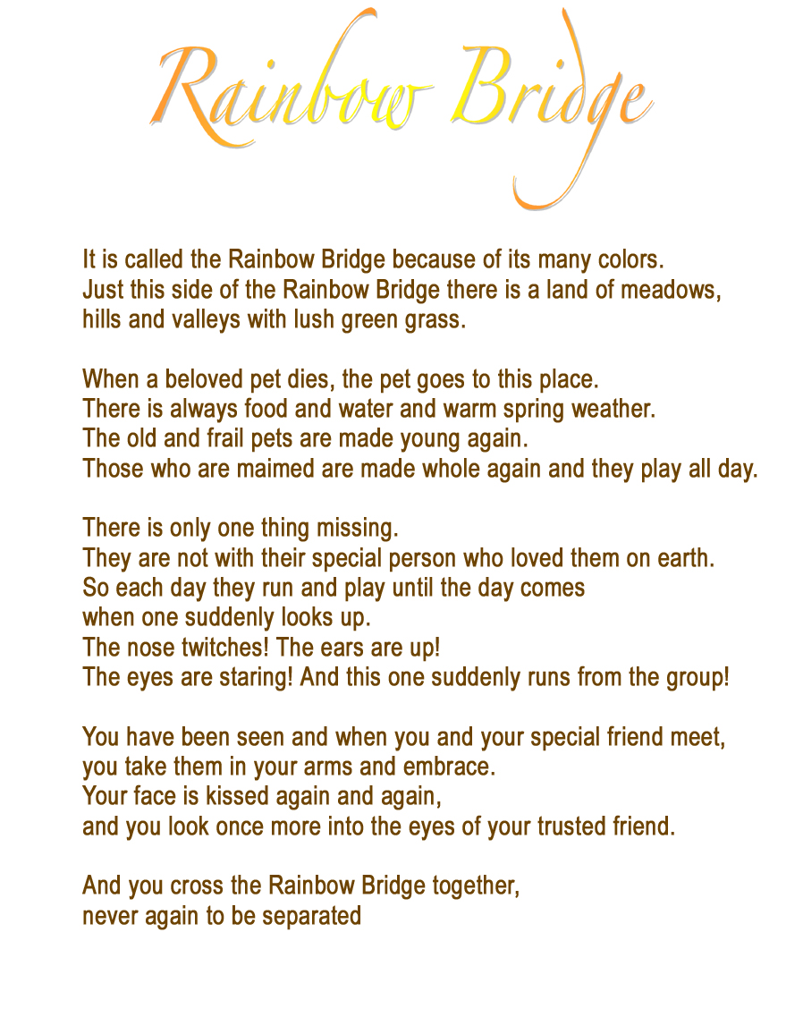 photo regarding Rainbow Bridge Poem for Dogs Printable identified as I misplaced my least complicated pal at present. - Web site 3